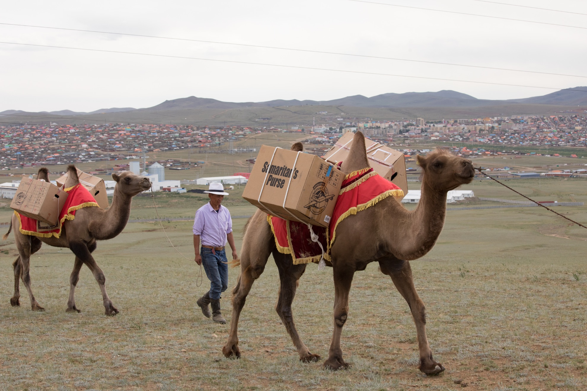 몽골에서는 아이들에게 전달할 선물상자를 낙타를 통해 운송하기도 한다.